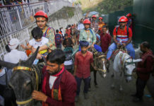 20 lakh Vaishno Devi pilgrims go high-tech for hiring ponies