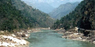 Government Slews up New Initiatives with Public Participation to Shore up Green Cover in Himachal