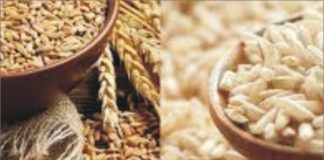 Punjab Dispatched 938 Rakes of Wheat & Rice to other states