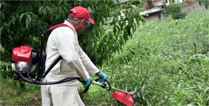 Brush cutter for hilly area launched