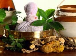 Best herbs to boost immunity